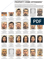 Most Wanted Property Crimes Offenders May 2010