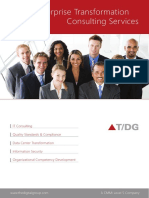 Enterprise Transformation Consulting Services Brochure by T/DG