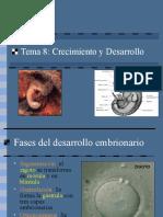 8_desarrollo_embrionario.ppt