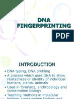 Dna Fingerprinting2