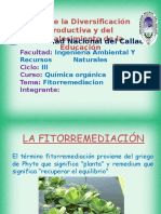 FITORREMEDICION-1
