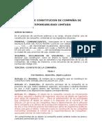 Proyecto de Minuta de Constitucion de Compañía De