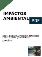 283622454-Impactos-AmbientalesDDDDDDDDDD.pptx