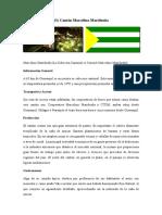 25-CANTONES-DE-LA-PROVINCIA-DEL-GUAYAS parte 2.docx