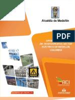 Sector Energía Eléctrica en Medellín