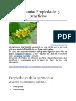 Agrimonia.docx
