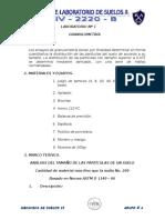 Guia de Lab Suelos II (Original)