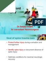 Spinalinjury (1)