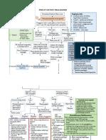 Web of Caution Thalassemia