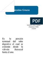 Intestino Grueso ppt. Cirugia .ppt_1