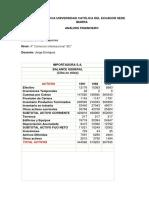 IMPORTADORA SA.pdf