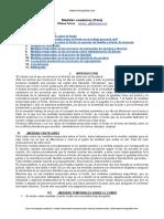medidas-cautelares-medidas-temporales.doc