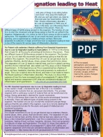 prana.liver-qi-stagnation-leading-to-heat.pdf