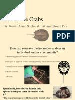 horseshoe crabs - group 4