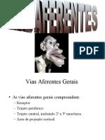aula_vias_aferentes