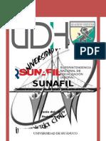 Trabajo Final Sunafil 1 Gerzon