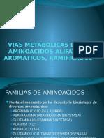 URP Vías metabólicas de los aa.pptx
