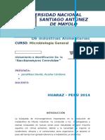 Microbilogia Trabajop de Investigacion.