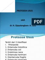 Protozoa Usus 2