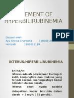 Management of Hyperbilirubinemia Ppt Buhuy Ria