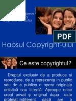 Haosul Dreptului de Autor