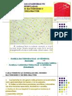 9. Clase Generos Bacteroides y Dichelobacter 2007 Zoraida.