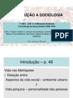 1º Ano Sociologia Cap 5 Simmel