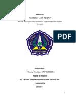 MAKALAH_BAYI_BERAT_LAHIR_RENDAH_Makalah.doc