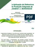 aplicacao_defensivos.pdf