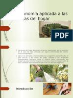 Ergonomía Aplicada a Las Tareas Del Hogar