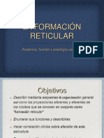 Formación Reticular