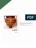 ILIADE di Omero - Libro ottavo - Prove di traduzione interlineare con note grammaticali e vocabolario essenziale in linea