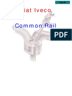 Fiat Iveco Common Rail.pdf