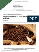 Diferencias Entre El Café Robusta y El Café Arábica _ Blog Café Saula