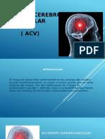 Presentación1. Anatomia