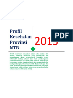 Profil Kesehatan Provinsi NTB 2013