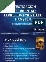 Presentacion_ProyectoAnimal