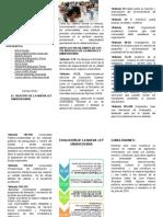 triptico-METODOLOGIA-1.docx