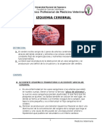 Izquemia Cerebral