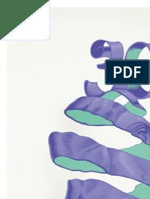 важные годы мэг джей скачать бесплатно pdf