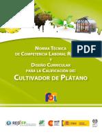Cultivo de Platano en Centro America