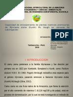 Exposicion Fitomejoramiento ppt.pptx