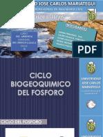 Ing. Ambiental Christian Ciclos Biogeoquimicos