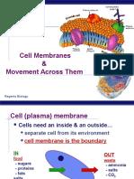 Transport membran_2.ppt