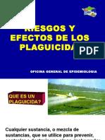 Riesgos y Efectos de Plagicidas_trabajadores.ppt