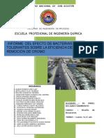 Informe Final Cromo6 y Microorganismos Eficientes LUNES 9-11