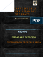 hemorragiasdelprimertrimestre-140915205236-phpapp02