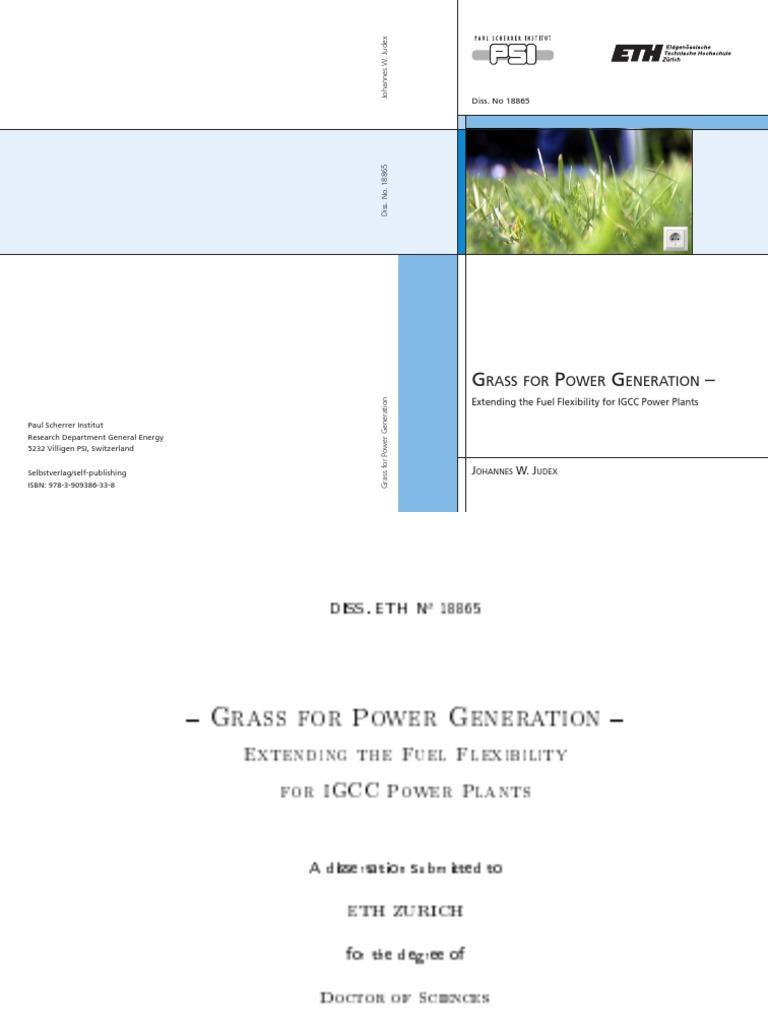 GrassForPowerGeneration Pdf Gasification