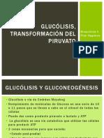 2. Glucólisis