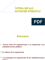 Cultura de Las Organizaciones Publicas